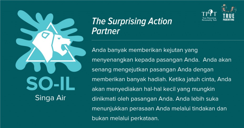 Singa Air (SO-IL) - Most Practical